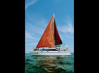 Яхта Контенто под парусами - Yachts.ua
