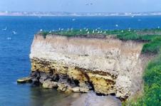 Обрывистые берега на острове Березань - Yachts.ua